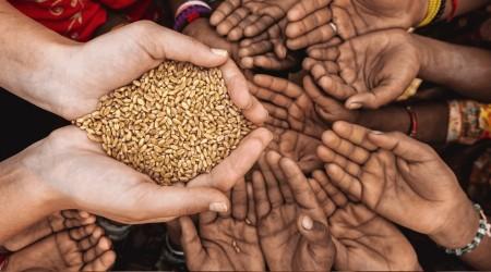 Kapıyı Çalan Gıda Krizi