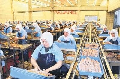 Dardanel Fabrikasında Zorunlu Kapalı Çalışma